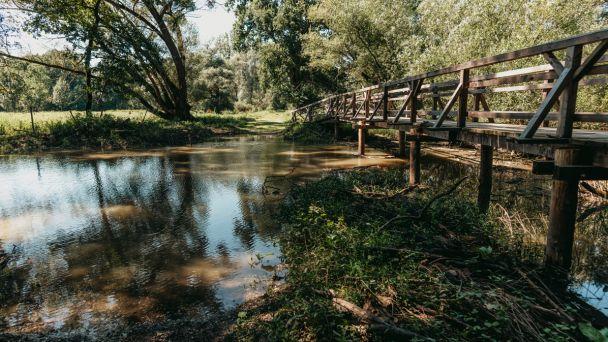 Prírodná rezervácia Dolnomoravské luhy v Rakúsku má nový náučný chodník